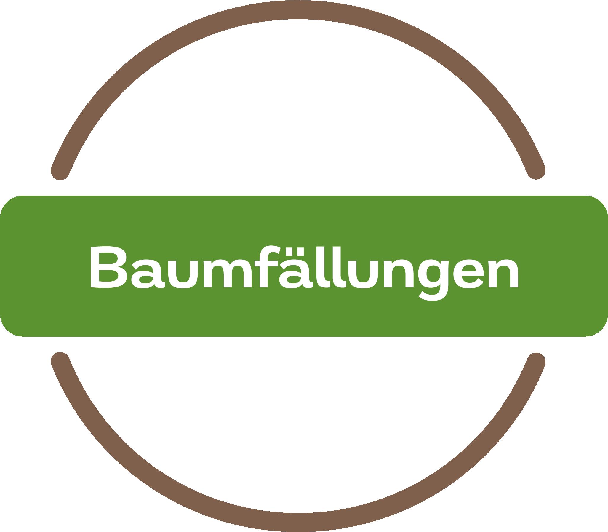 Baumfällungen Dienstleistung